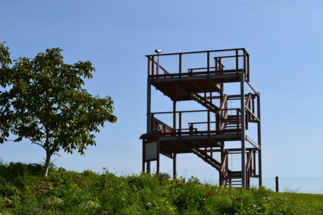 Otwarcie wieży widokowej_1.jpeg